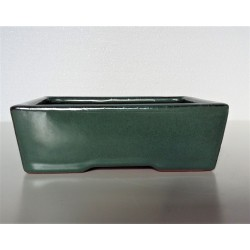 Poterie bonsai rectangulaire 16x12x5
