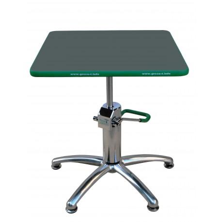 Table de travail pour bonsai Green-T basic carrée 53x53cm