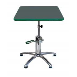 Table de travail pour bonsai Green-T PLuscarrée 53x53cm
