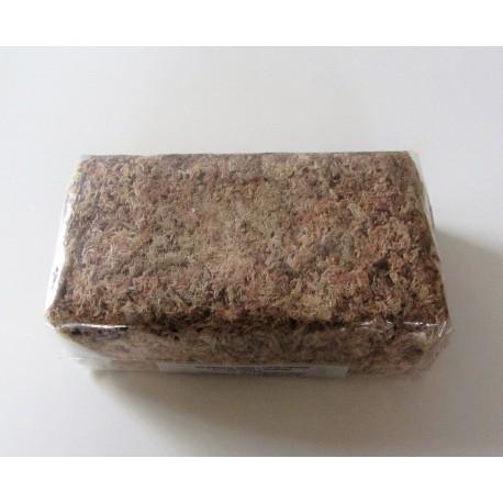 Sphaigne du Chili - 150gr - 7,5Litres