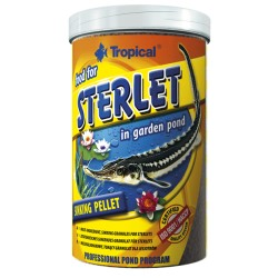 Sterlet 650gr Tropical