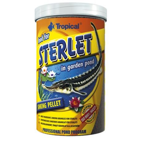 Sterlet 650gr Tropical