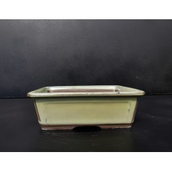Poterie bonsai rectangulaire 17.5x13.5x6cm