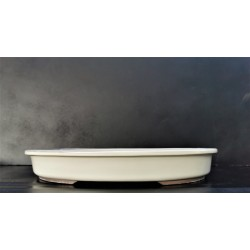 poterie bonsai ovale 38x30x5.5cm