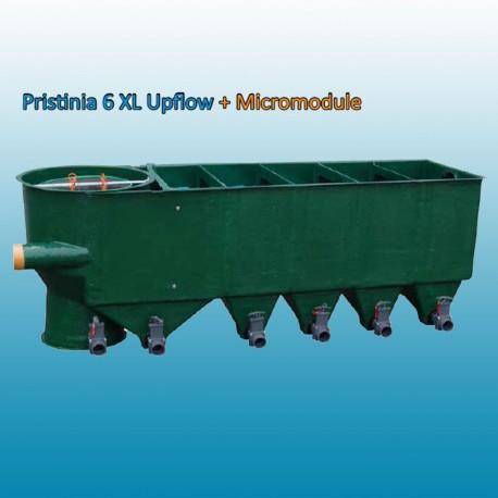 filtre Pristina 6xl micromodule + uv110watts intégré plug and play